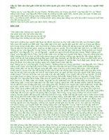 """Vẻ đẹp con người Việt Nam trong """"Rừng xà nu"""" của Nguyễn Trung Thành, """"Những đứa con trong gia đình"""" của Nguyễn Thi và """"Mảnh trăng cuối rừng"""" của Nguyễn Minh Châu"""