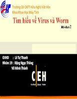 Bài Giảng Tìm Hiểu Về Virus Và Worm
