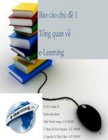 Báo cáo chủ đề 1 tổng quan về e learning