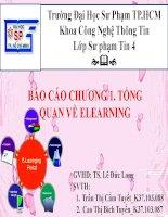 Báo cáo chương 1 Tổng quan về e learning