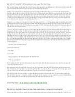 Bài viết số 1 lớp 8 văn tự sự