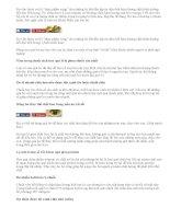 """6 sự thật bất ngờ về quả bơ – """"vua thực phẩm  ăn dặm"""""""