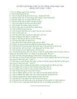 TUYỂN TẬP 35 BÀI TIỂU LUẬN TIẾNG ANH CHỌN LỌC (SONG NGỮ ANH – VIỆT)