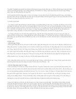 Phân tích nhân vật Thị trong tác phẩm Vợ Nhặt
