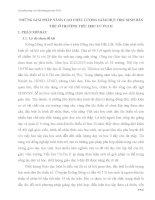 NHỮNG GIẢI PHÁP NÂNG CAO CHẤT LƯỢNG GIÁO DỤC HỌC SINH DÂN TỘC Ở TRƯỜNG TIỂU HỌC CƯ PUI II