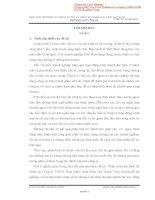 PHÂN TÍCH TÌNH HÌNH tài CHÍNH CÔNG TY TNHH THỰC PHẨM XUẤT KHẨU HAI THANH