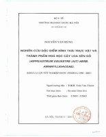 Nghiên cứu đặc điểm hình thái thực vật và thành phần hóa học cây loa kèn đỏ (hippeastrum equestre (ait) herb  amaryllidaceae)