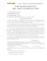 10 đề thi môn Tiếng Việt (đọc - hiểu) cuối học kì 2 lớp 5