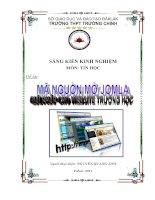Bìa SKKN năm 2011
