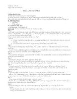 Tiết 22 bài tập sinh học 11
