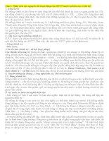 CÂU HỎI VÀ TRẢ LỜI PHẦN HỆ THỐNG CHÍNH TRỊ VÀ NHÀ NƯỚC PHÁP QUYỀN