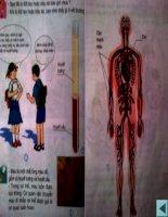 Bài 6: Máu và cơ quan tuần hòa