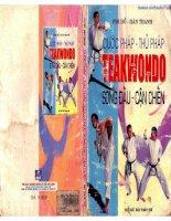 Taekwondo song đấu tự do