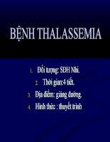 Bài giảng thiếu máu tan máu: Thalassemia