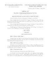 THÔNG TƯ 13 (Quy định về Giải thưởng Môi trường Việt Nam)