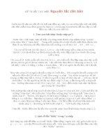 KỸ THUẬT TAY MẶT   Nguyên tắc căn bản trong học Giutar