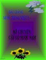 Bài giảng tiếng việt 5 tuần 7 bài kể chuyện   cây cỏ nước nam