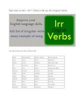 Ngữ pháp cơ bản – bài 7 động từ bất quy tắc (irregular verbs)