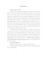 HOÀN THIỆN CÔNG TÁC ĐỊNH GIÁ TRONG HOẠT ĐỘNG MA  NGÂN HÀNG TẠI VIỆT NAM