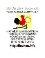 Văn hay lớp 4  Tả con vật  tả con gà trống