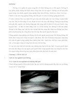 Bài tiểu luận quy trình công nghệ sản xuất đường saccharose từ mía