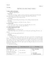 Tiết 13 (G.án của Đồng Thị Thanh)