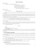 Đề thi và gợi ý thi học sinh giỏi môn ngữ văn lớp 9 tham khảo bồi dưỡng (9)