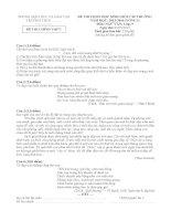 Đề thi và gợi ý thi học sinh giỏi môn ngữ văn lớp 9 tham khảo bồi dưỡng (3)