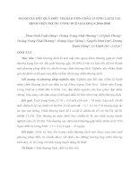 ĐÁNH GIÁ KẾT QUẢ ĐIỀU TRỊ BẢO TỒN CHẤN THƯƠNG LÁCH TẠI BỆNH VIỆN TRUNG ƯƠNG HUẾ GIAI ĐOẠN 2006-2010