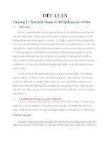 Tiểu luận pháp luật đại cương: QUYỀN SỞ HỮU