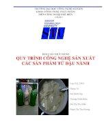 Báo cáo thực hành quy trình công nghệ sản xuất các sản phẩm từ đậu nành