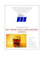 Báo cáo thực hành quy trình công nghệ chế biến jam dứa