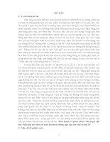 RÈN LUYỆN VÀ PHÁT TRIỂN TƯ DUY LOGIC CHO HỌC SINH THÔNG QUA DẠY HỌC ĐẠI SỐ LỚP 10