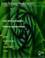 Energy technology perspectives   pathways for low carbon transport