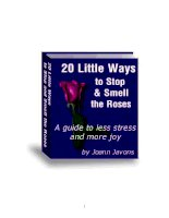 20 little ways to stop  smell the roses a guide to less stress  more joy