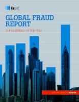 Global fraud report 2015 16