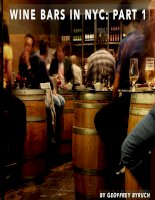 Wine bars in NYC chapter 1 by geoffrey byruch