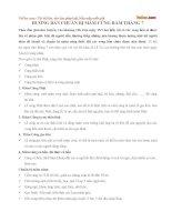 Hướng dẫn chuẩn bị mâm cúng rằm tháng 7