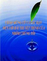Bài giảng tài nguyên rừng Việt Nam