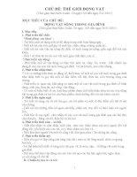giáo án mầm non  CHỦ đề THẾ GIỚI ĐỘNG vật bản 1