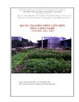 Bài dự thi kiến thức liên môn dành cho học sinh trung học cơ sở (15)