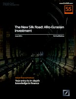 The new silk road