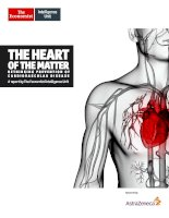 The heart of the matter   rethinking prevention of cardiovascular disease
