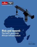 Risk and reward  the gulf push into african infrastructure