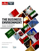 The business environment in gulf co operation council countries