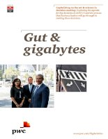 Gut  gigabytes  UK country report capitalising on the art science in decision making
