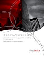 Business across borders licence to travel