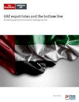 UAE expatriates and the bottom line