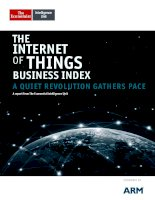 The internet of things business index