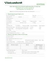 Mẫu giấy đề nghị cấp tín dụng kiêm phương án trả nợ